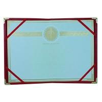 金辉(Plume) 101-A3高级牛皮纹荣誉证书(礼盒装)